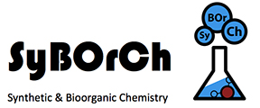 Syborch Logo